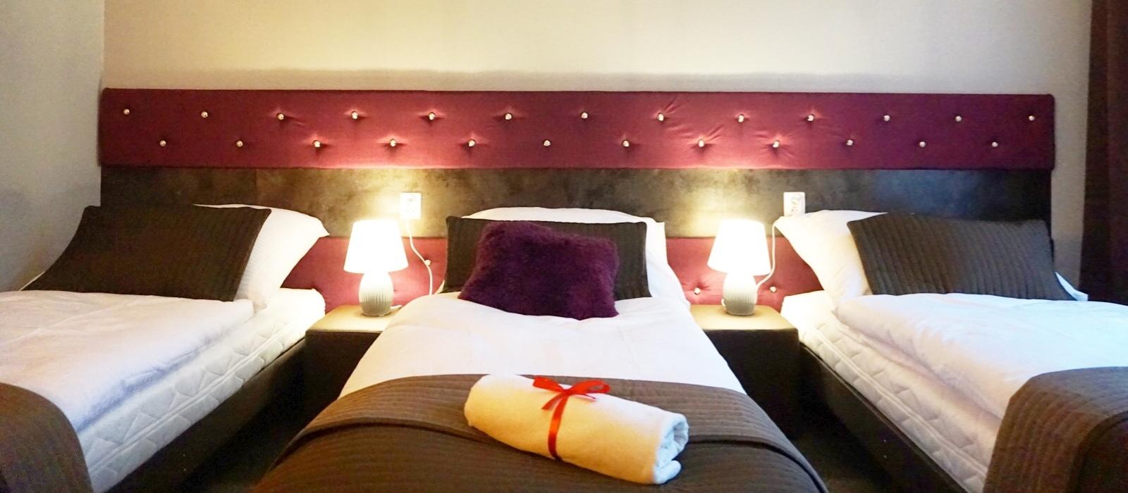 Pokój czteroosobowy Premium w Hotelu Expolis Residence baner